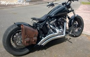 SO04 veg antique sur Softail Blackline (2)