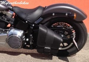 SO01 montana softail
