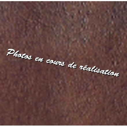 Poignée de transport cuir
