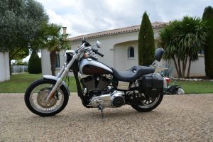 Sacoche Myleatherbikes Harley Dyna Low Rider (18)