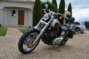 Sacoche Myleatherbikes Harley Dyna Low Rider (20)