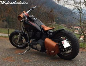 SO04 Veg Havane Harley Softail (2)