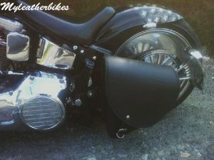 Sacohe Softail S06GLNG 1