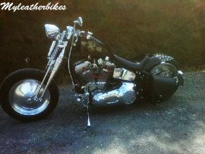 Sacohe Softail S06GLNG