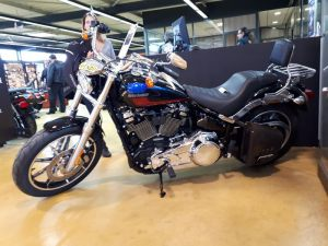 Sacoches Myleatherbikes Softail Streetbob Low rider (2)