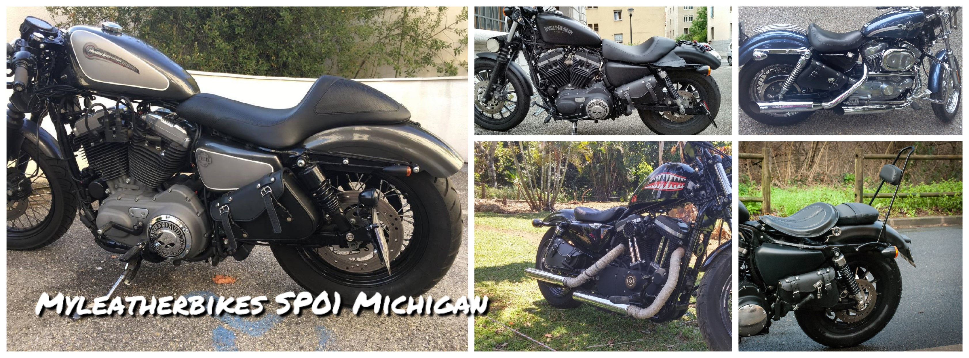 sacoche-sportster-sp01-michigan